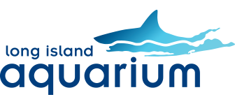Long Island Aquarium | Welcome to the Long Island Aquarium