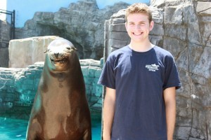 Sea Lion Smile