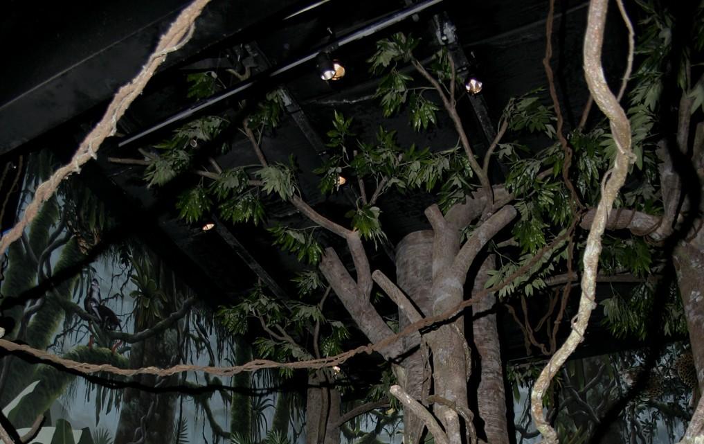 Amazon Rainforest Exhibit at LI Aquarium & Exhibition Center