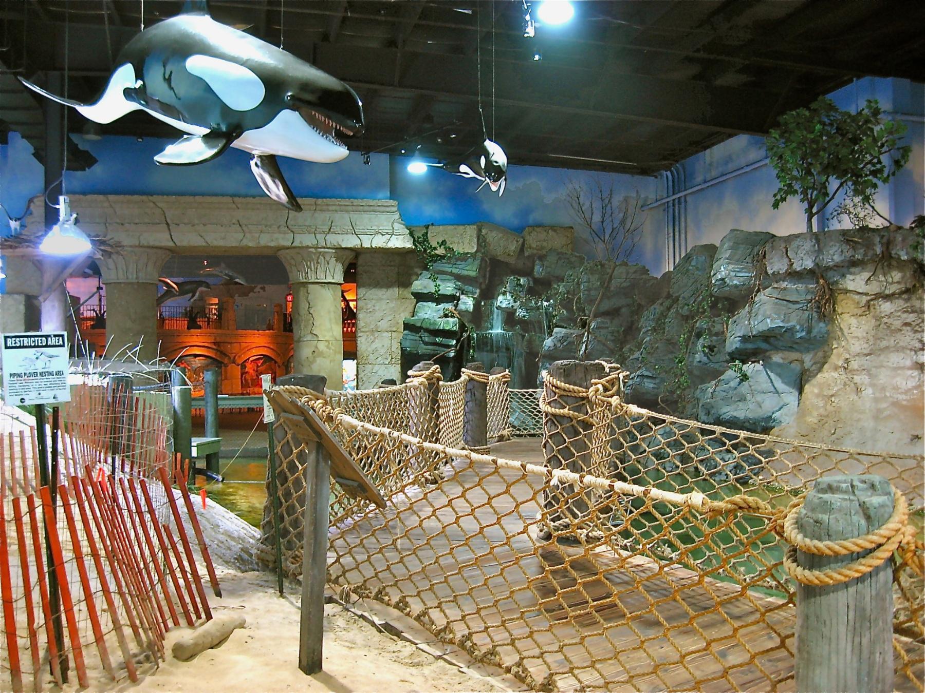 Overview of the aquarium