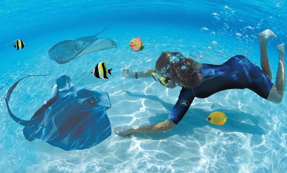 Pirate Snorkel Adventure - Swim with the stingrays