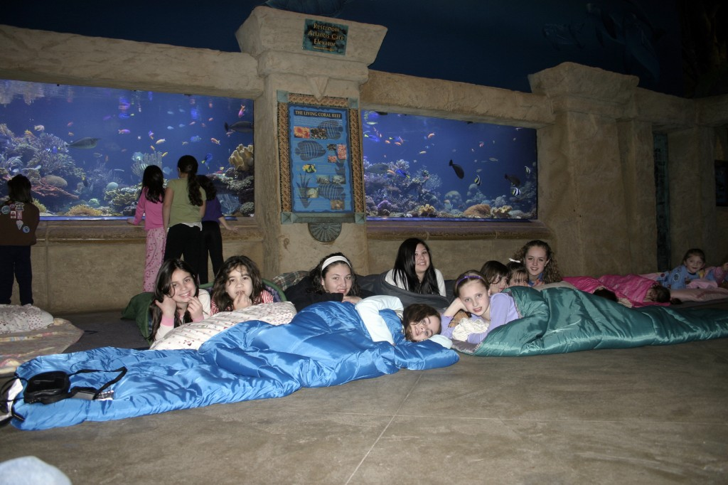 Sleep with the fishes long island aquariumlong island for Sleeping with the fishes