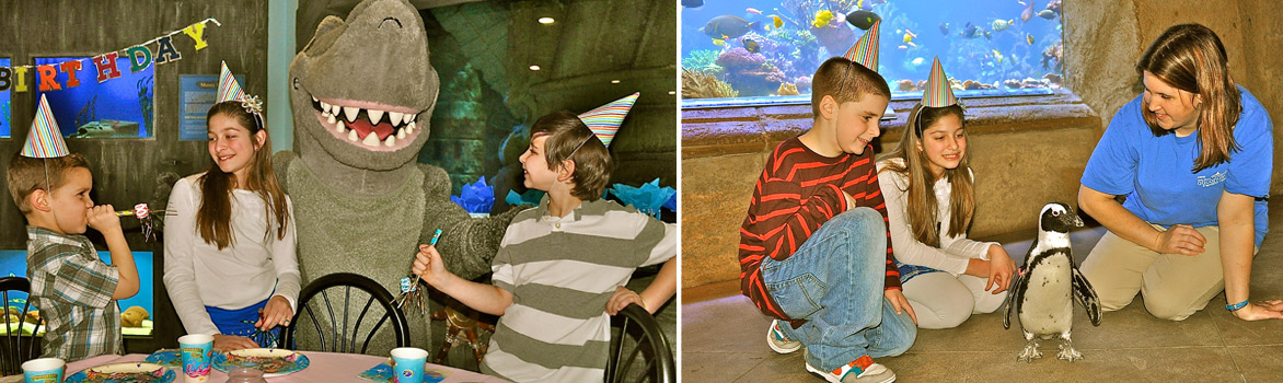 Aqautic Birthday Parties At The Long Island AquariumLong Aquarium