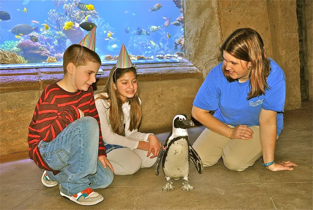 Birthday parties at Long Island Aquarium