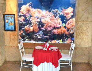 chocovino table setting