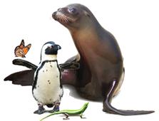 Riverhead Aquarium Coupons